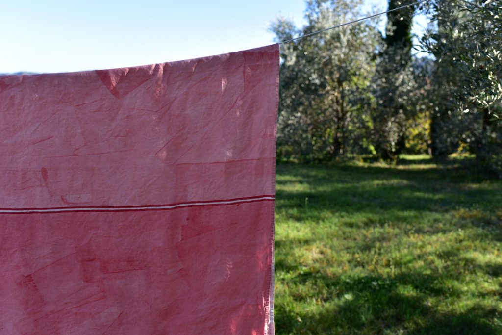 Bertozzi hand painted linen tablecloth pink