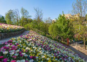 Beautiful Gardens of Italy Trauttmansdorff Castle