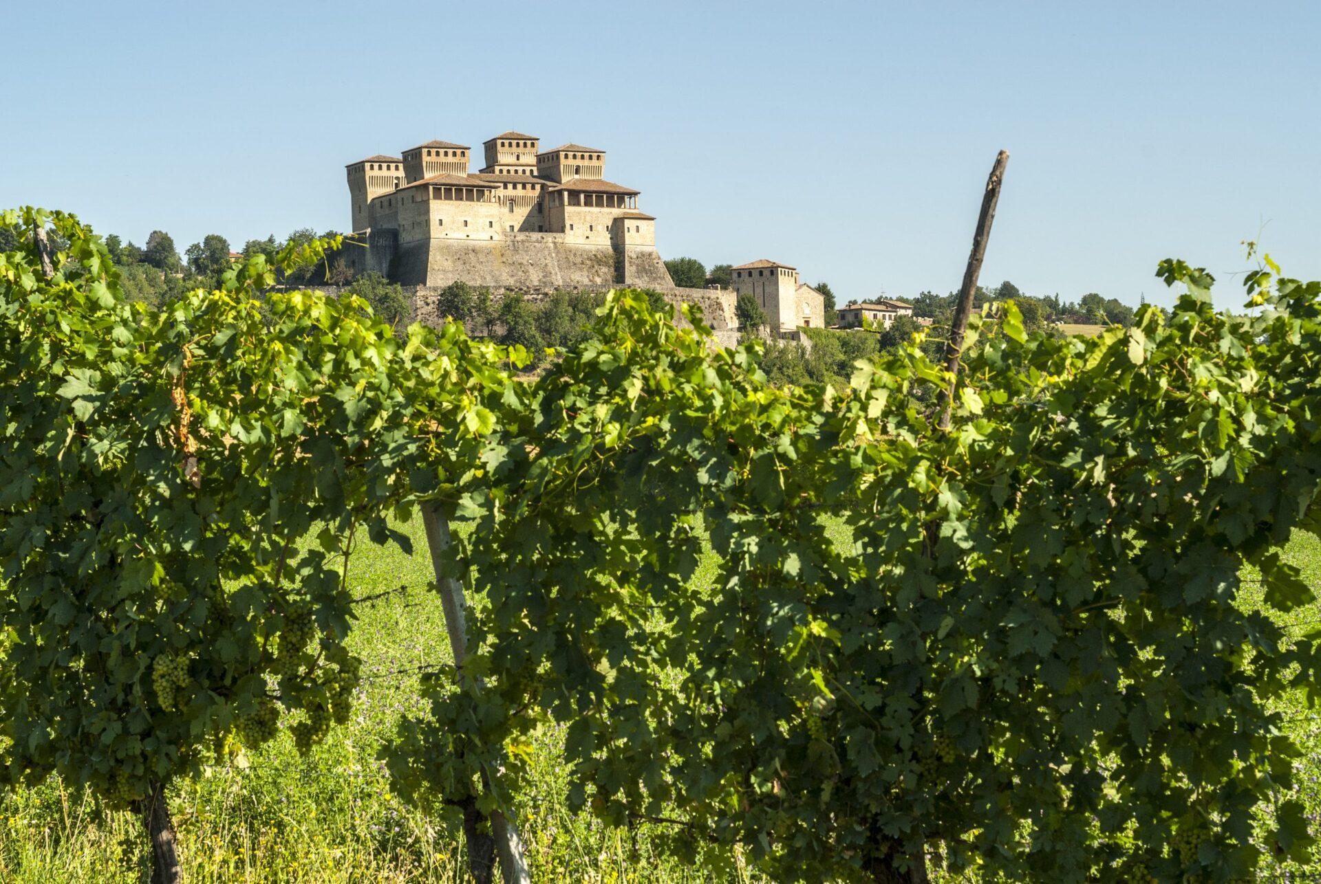The Castle of Torrechiara and vineyard, Emilia Romagna
